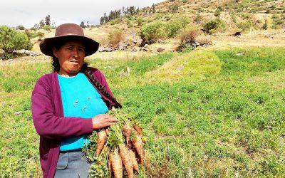 EL VALOR DE LAS MUJERES RURALES,  LÍDERES DE LA AGRICUTURA Y LA SEGURIDAD ALIMENTARIA